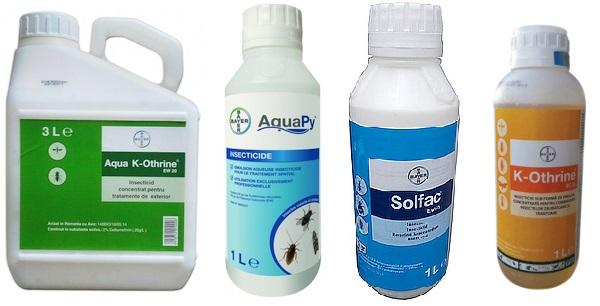 dezinsectie capuse insecticide recomandate